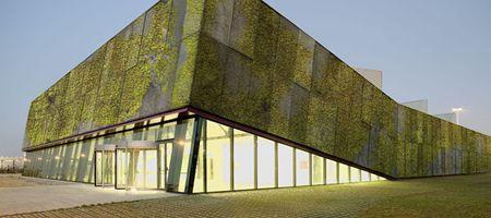 Живой фасад из биологического бетона